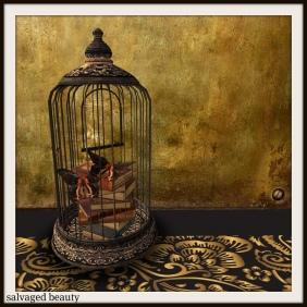 Burtterly Cage