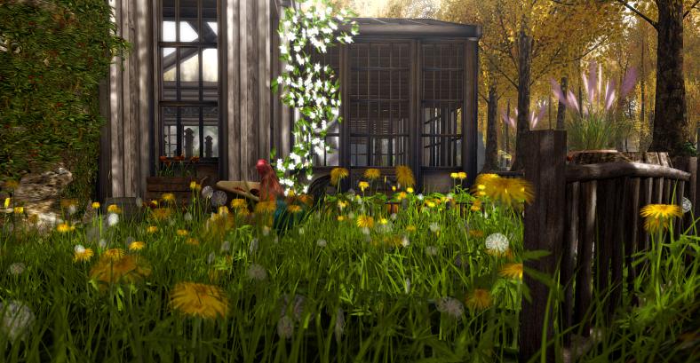 cottage garden_001